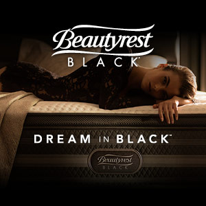 Beautyrest Black