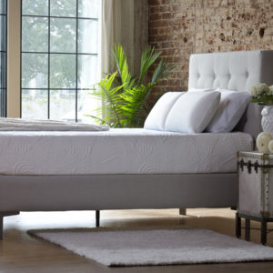 pure-talalay-bliss-worlds-best-bed